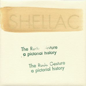 Shellac-The-Rude-Gesture-A-Picrtorial-History