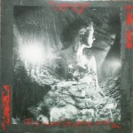 Devil-Wrapped-Ginsung-Buried