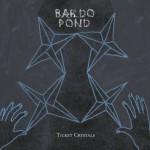 Bardo-Pond-Ticket-Crystals