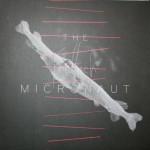 Micronaut-Friedfisch