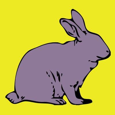 Blind Bunny