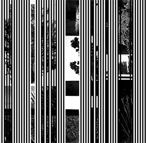 Jake Meginsky – Basslines 2×7