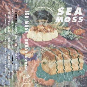 Sea Moss – Bread Bored